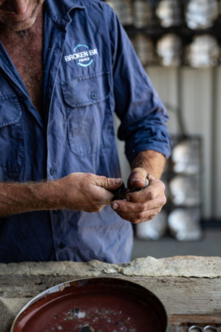 Pearls of Australia, a third-generation family business, has successfully spawned two species of pearl oysters across its hatcheries.