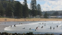 Popular with tourists: Avoca Beach.