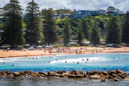 AVOCA BEACH REHABILITATION